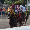 Curlin's Approval wins the 2017 Princess Rooney<br /> Coglianese Photos/Lauren King