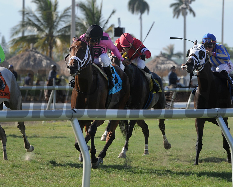 Spring Up with Miguel Vasquez wins the Mecke Handicap at Gulfstream Park on July 9, 2017.<br /> Coglianese Photos/Kenny Martin