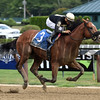 Aveenu Malcainu wins the 2017 Funny Cide Stakes<br /> Coglianese Photos