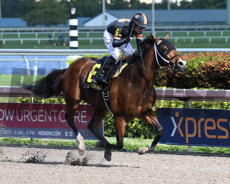 Mended wins the 2017 Claiming Crown Glass Slipper<br /> Coglianese Photos/Lauren King