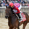 Kathryn the Wise wins $200,000 the Critical Eye Stakes at Belmont Park on May 29 2017