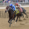 Takaful wins the 2017 Vosburgh<br /> Coglianese Photos/Joe Labozzetta
