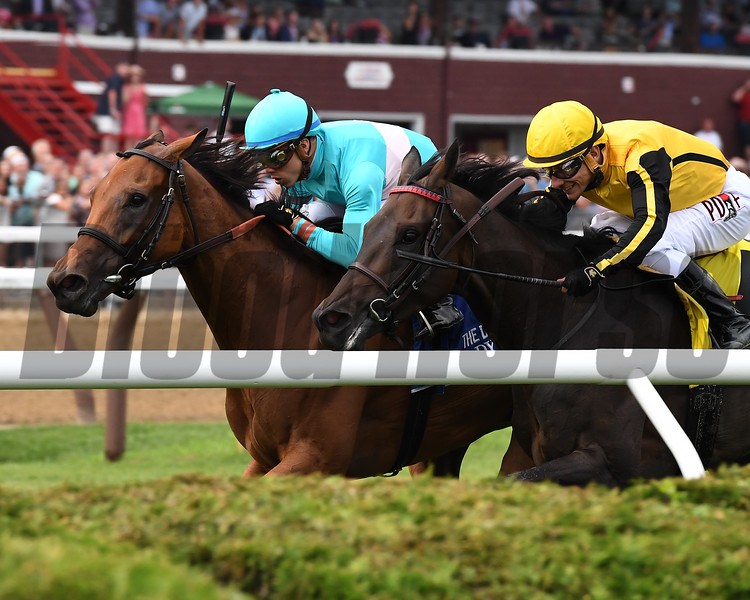 Lady Eli wins the 2017 Diana Stakes<br /> Coglianese Photos/Joe Labozzetta
