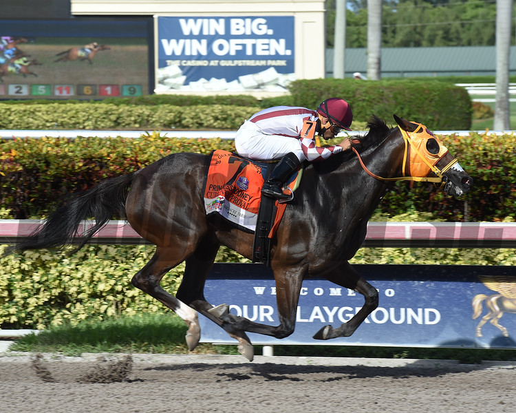 Curlin's Approval wins the 2017 Princess Rooney<br /> Coglianese Photos/Leslie Martin