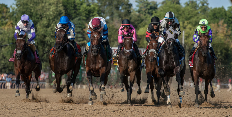 As the field left the gate as passes the clubhouse for the first time Elate with jockey Jose Ortiz, second from left, ultimately left the field behind to win the 137th running of The Alabama Saturday Aug. 19, 2017 at the Saratoga Race Course in Saratoga Springs, N.Y.  (Skip Dickstein/