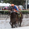 Diamond Oops wins the 2017 Buffalo Man Stakes<br /> Coglianese Photos/Kenny Martin