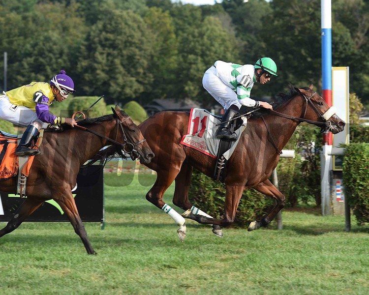 Defiant Honor wins the 2017 Riskaverse<br /> Coglianese Photos/Susie Raisher