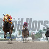 Curlin's Approval wins the 2017 Royal Delta Stakes<br /> Coglianese Photos/Leslie Martin