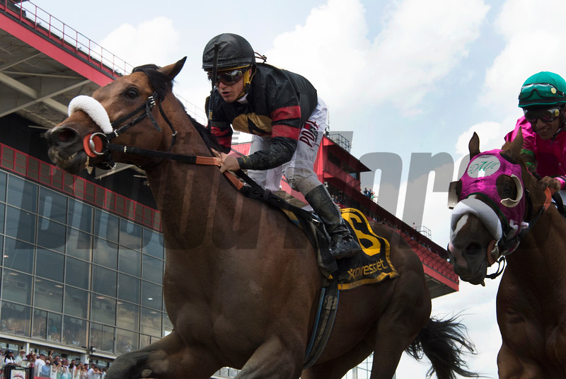 Shaman Ghost with jockey Javier Castellano up duels with Dolphus ridden by Rajiv Maragh to capture the win in the 47th running of The Pimlico Special held Friday May 19, 2017 in Baltimore, Maryland.  Photo by Skip Dickstein