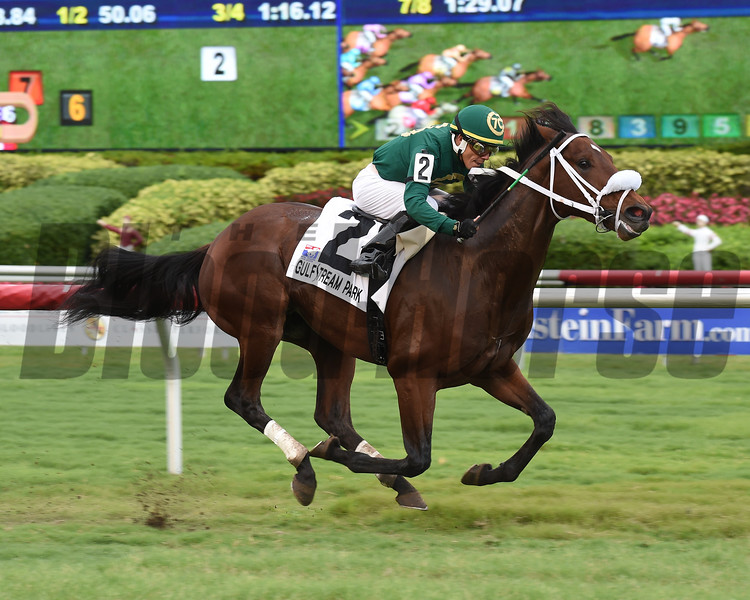 Speed Franco wins the 2017 Pulpit Stakes<br /> Coglianese Photos