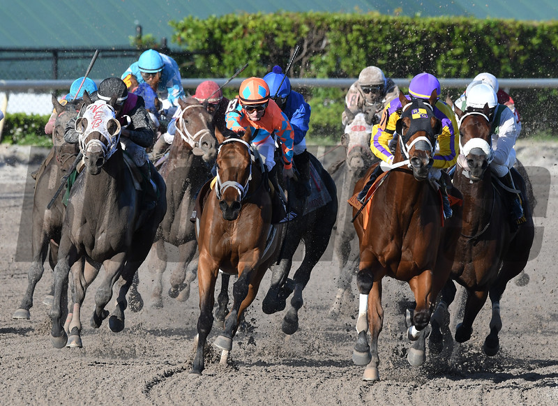 Cautious Giant wins the 2017 Claiming Crown Rapid Transit<br /> Coglianese Photos/Andie Biancone