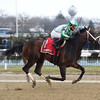 Haul Anchor wins the 2017 Gander Stakes<br /> Coglianese Photos/Chelsea Durand