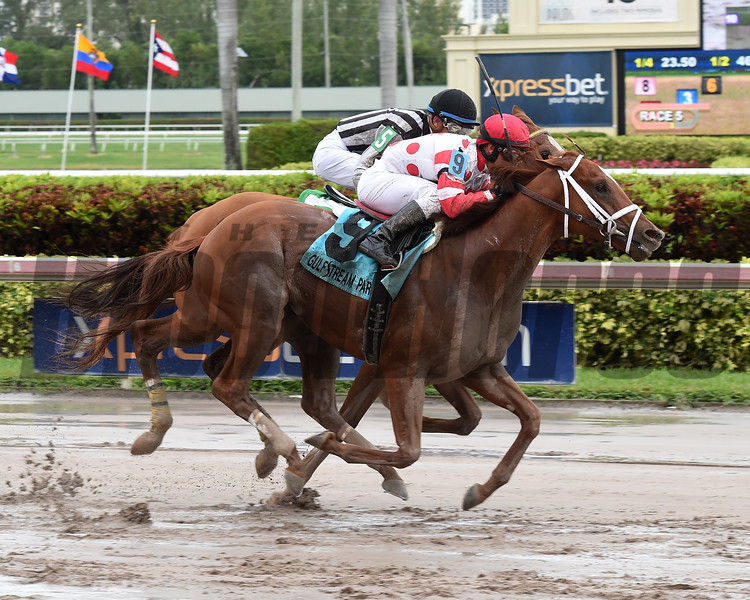 Bal Harbour wins the 2017 Smooth Air Stakes<br /> Coglianese Photos/Leslie Martin