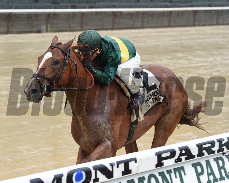 Timeline wins the 2017 Peter Pan Stakes<br /> Coglianese Photos/Chelsea Durand