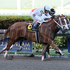 Distinta wins the 2017 Inside Information Stakes<br /> Coglianese Photos/Lauren King
