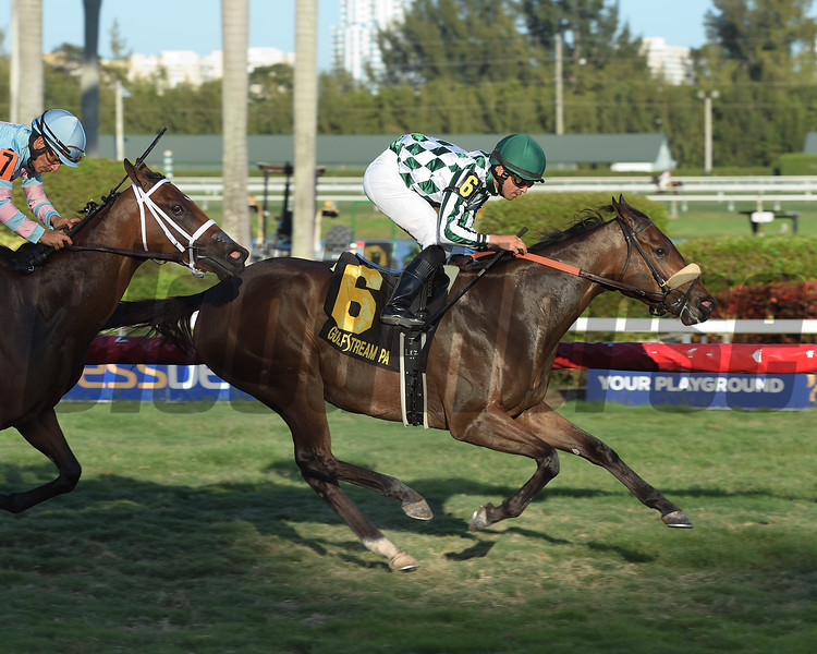 Morticia wins the 2017 Melody of Colors Stakes<br /> Coglianese Photos/Leslie Martin