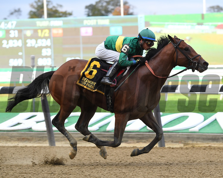 Engage wins the 2017 Futurity<br /> Coglianese Photos/Viola Jasko