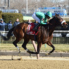 Wonder Gal wins the 2017 Ladies Handicap<br /> Coglianese Photos