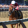 Gun Runner wins the 2017 Whitney<br /> Coglianese Photos/Adam Mooshian