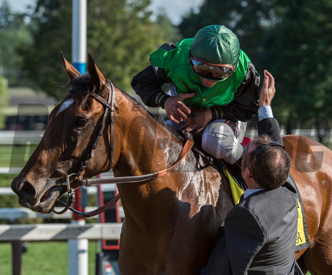 Jockey Javier Castellano is congratulated by trainer Brendan Walsh after winning the 34th running of The Lake Placid Saturday Aug. 19, 2017 at the Saratoga Race Course in Saratoga Springs, N.Y.  (Skip Dickstein/