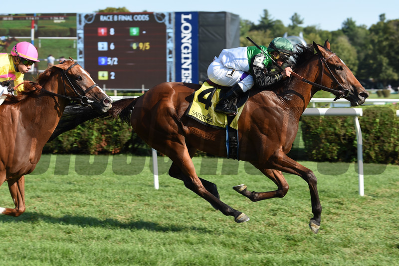 Proctor's Ledge wins the 2017 Lake Placid<br /> Coglianese Photos/Susie Raisher