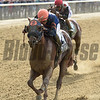 Mind Your Biscuits wins the 2017 Belmont Sprint Championship<br /> Coglianese Photos/Chelsea Durand