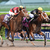 Sonic Mule wins the 2017 Mucho Macho Man<br /> Coglianese Photos