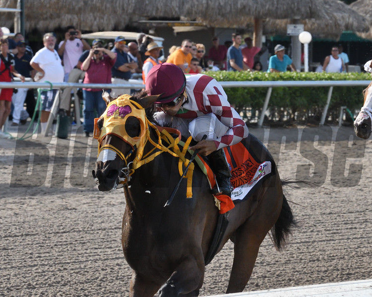 Curlin's Approval wins the 2017 Princess Rooney<br /> Coglianese Photos/Kenny Martin