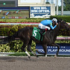 Violent Times - Maiden Win, Gulfstream Park, December 24, 2017<br /> Coglianese Photos/Leslie Martin