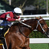 Gun Runner wins the 2017 Whitney<br /> Coglianese Photos/Robert Mauhar