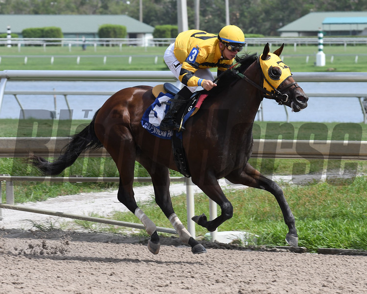 Soutache wins the Florida Sire In Reality Stakes<br /> Coglianese Photos/Lauren King