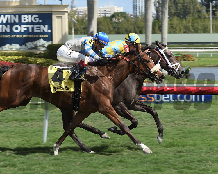 Dream Dancing wins the 2017 Herecomesthebride Stakes<br /> Coglianese Photos/Leslie Martin