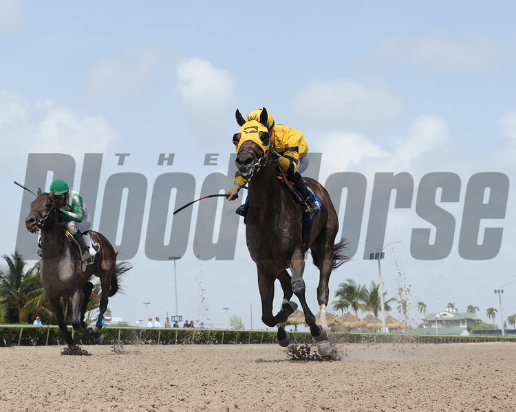 Soutache wins the Florida Sire In Reality Stakes<br /> Coglianese Photos/Leslie Martin