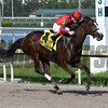 King's Ghost wins the 2017 Monroe Stakes<br /> Coglianese Photos/Lauren King