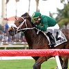 Speed Franco; $75,000, Pulpit Stakes; Gulfstream Park; December 9 2017