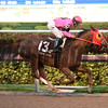 Flowers for Lisa wins the 2017 Claiming Crown Jewel<br /> Coglianese Photos/Leslie Martin
