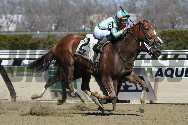 Highway Star wins the Distaff Handicap (G3) at Aqueduct on April 9 2017