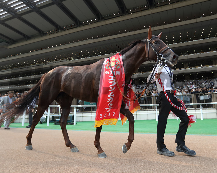 Dashing Blaze with Suguru Hamanaka wins the Epsom Cup (G3) at Tokyo racecourse on June 11 2017