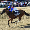 American Gal wins the 2017 Test<br /> Coglianese Photos/Chelsea Durand