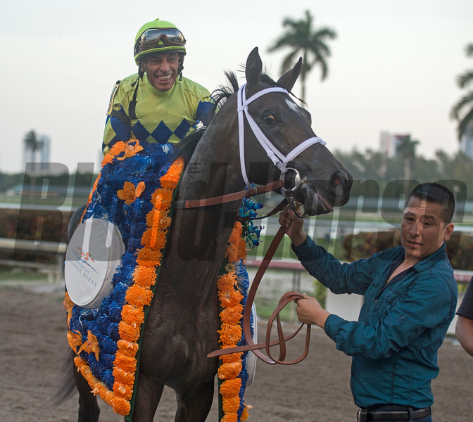 Always Dreaming with Johnny Velazquez  up Wins The Florida Derby at Gulfstream Park April 1 2017