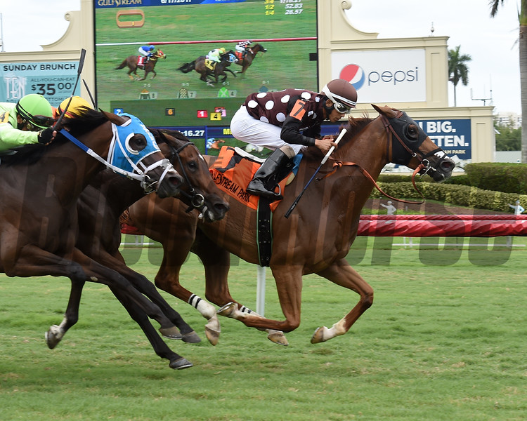 Somethingelse wins the 2017 Ginger Punch Stakes<br /> Coglianese Photos/Leslie Martin