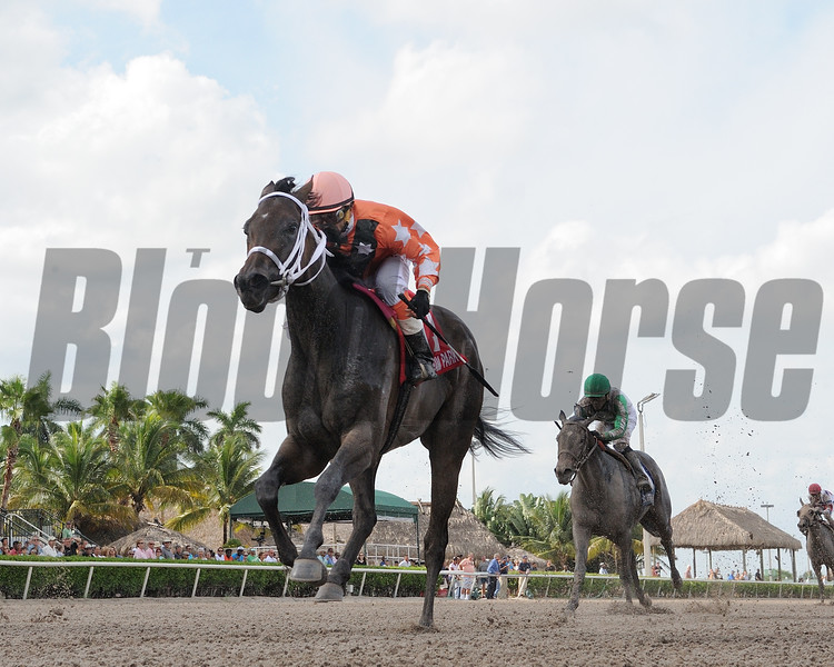 Starship Bonita wins the 2017 FTBOA Florida Sire Susan's Girl Stakes<br /> Coglianese Photos/Leslie Martin