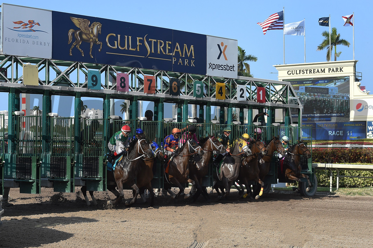 Starts of the Gulfstream Park Oaks (G2) at Gulfstream Park on April 1, 2017