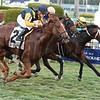 Sadler's Joy wins the 2017 Pan American Stakes<br /> Dave Harmon Photo