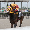 Curlin's Approval wins the 2017 Royal Delta Stakes<br /> Coglianese Photos/Kenny Martin