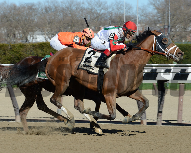 Send It In wins the 2017 Excelsior Stakes<br /> Coglianese Photos/Viola Jasko