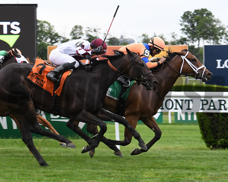 Mississippi Delta wins the 2017 Intercontinental Stakes<br /> Coglianese Photos/Viola Jasko