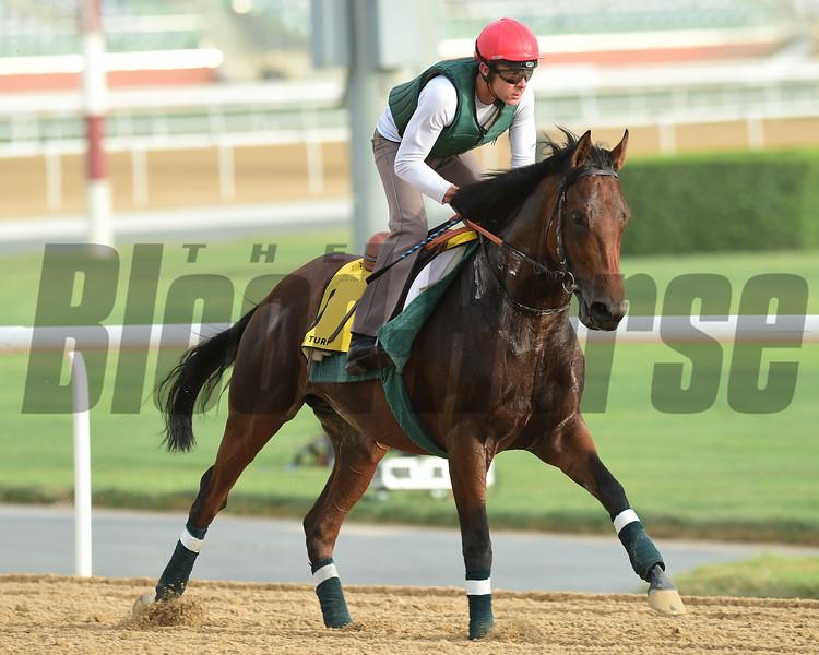 Dubai World Cup -Morning works 3/22/17, photo by Mathea Kelley/Dubai Racing Club<br /> Zarak, Dubai Turf