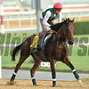 Dubai World Cup -Morning works 3/22/17, photo by Mathea Kelley/Dubai Racing Club<br /> Zarak, Dubai Turf
