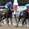 Takaful wins the 2017 Vosburgh Stakes<br /> Coglianese Photos/Robert Mauhar